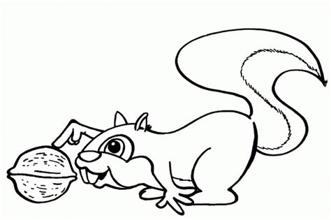 Get This Free Squirrel Coloring Pages For Toddlers P97hr Coloring Pages For Free