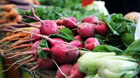 alimenti per stitichezza alimentazione x stitichezza idee di immagine di casa