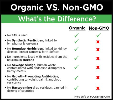 avoid gmo s and improve your health avoiding gmo s here s a guide s healthy kitchen