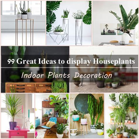 indoor decoration 99 great ideas to display houseplants indoor plants