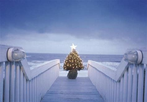 panama city beach christmas lights how to celebrate christmas in panama city beach
