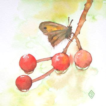 baby moths in bedroom best watercolor butterfly paintings products on wanelo