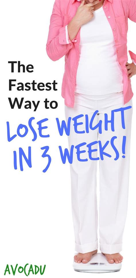 Fastest Way To Shed by Diet Plans To Lose Weight The Fastest Way To Lose Weight
