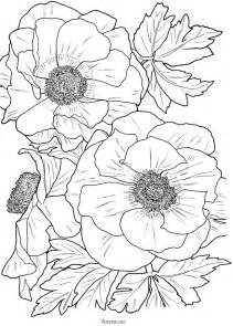 flower coloring pages for adults flowers free coloring pages
