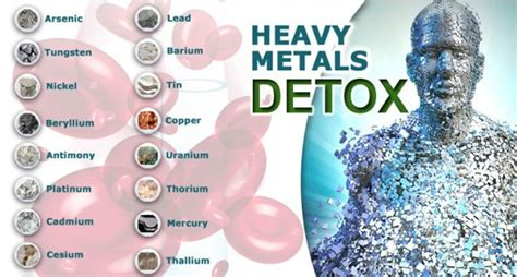 Safest Way To Detox After Poison Injestion by Detoxify Your From Heavy Metals With These 6 Potent