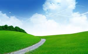 3d landscape green grass picture nr 38383
