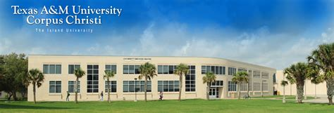 Tamucc Business Office by Comptroller S Office A M Corpus Christi