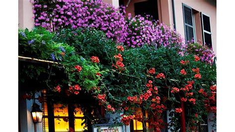 progettare un balcone fiorito balcone fiorito