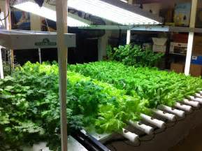 Indoor Gardening Indoor Growing Systems Anatomy Trains