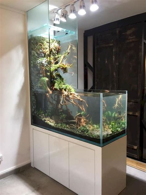 wall mounted fish tank  aquarium amazing aquariums