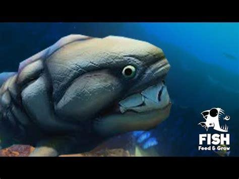 레벨 200까지 올린 엄청 거대한 고대어!?!? 3d 물고기 키우기 게임 feed and grow