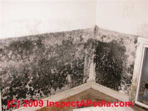 how to clean mold off ceiling in bathroom how to get black mold off bathroom ceiling thedancingparent com