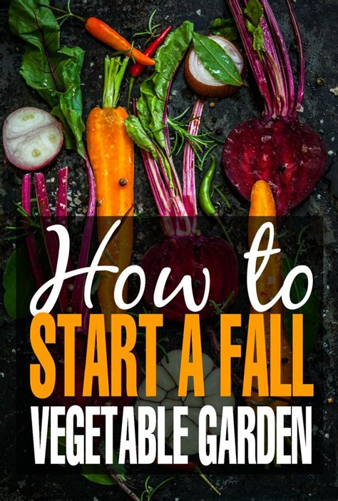 fall vegetable gardening tips how to start a fall vegetable garden frugal eh