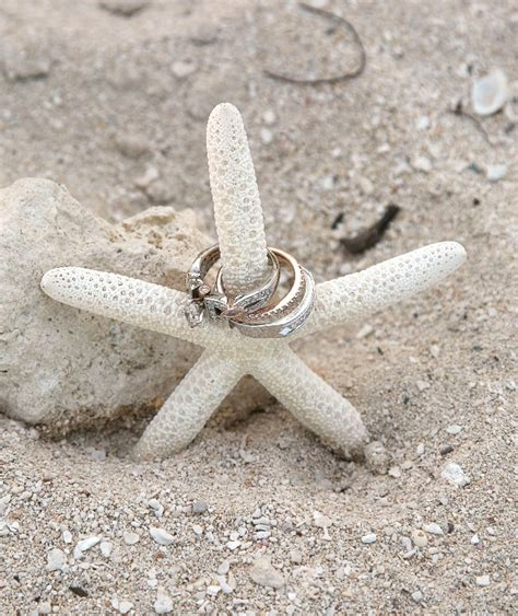Ck Boxy Ring shell and starfish d 233 cor for your jersey shore wedding partyspace