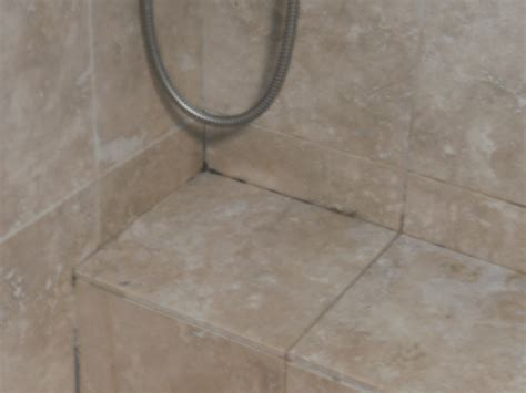 what is black mold in bathroom black mold strachybotrys atra and travertine tile