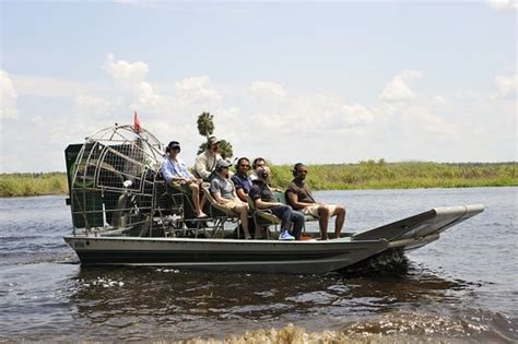 airboat and gator charters blue heron river tours deland fl top tips before you
