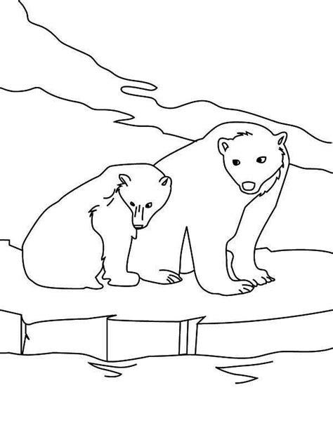 snow bear coloring page 22 outline polar bear tattoos