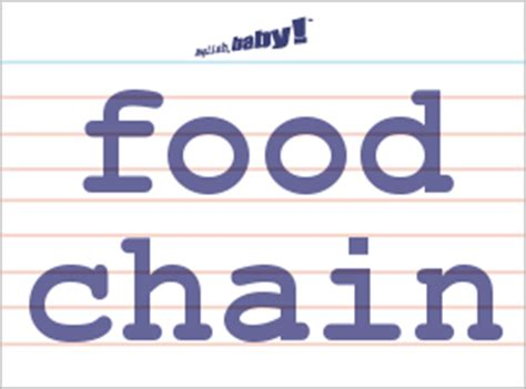 "what does ""food chain"" mean? 