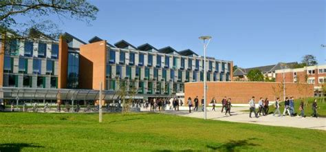 Sussex Mba of sussex business school sees record year for