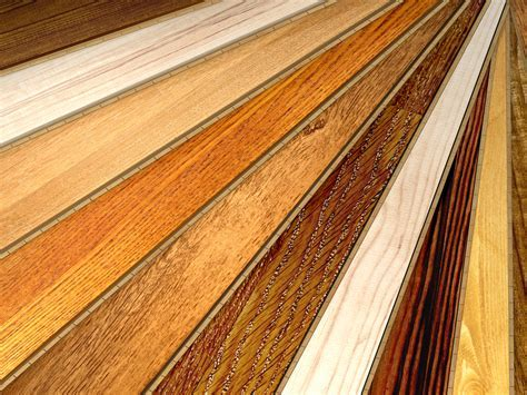 Water Based vs. Oil Based Polyurethane Hardwood Floor