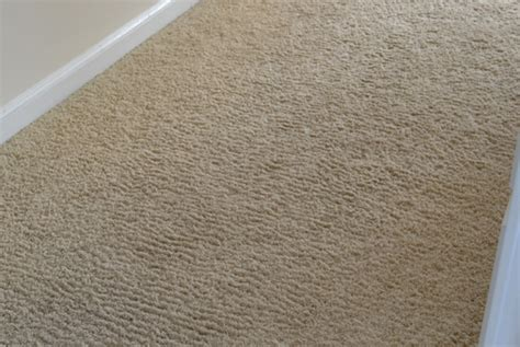 wall carpet corn rowing of wall to wall carpet carpets wall wall