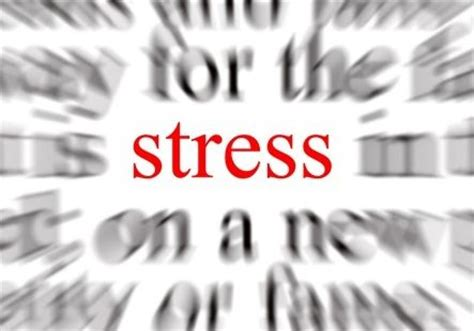 Don T Take Your Stress Out On Your Husband - how to overcome stress in everyday life betterhelp