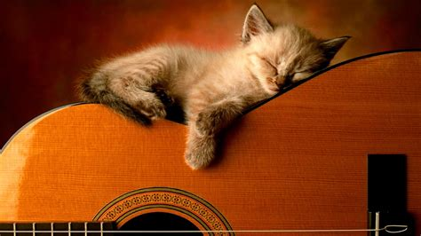 3 HOURS Relaxing Guitar Music: Instrumental Music, Calming ... Hours Of Sleep Required