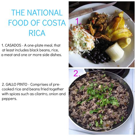 national cuisine of national food of costa rica shazzyc