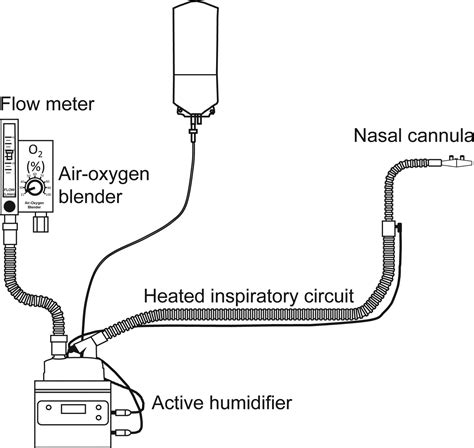 Fisher Paykel High Flow Nasal Cannula Manual 2019 Ebook