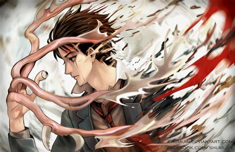 wallpaper anime parasyte parasyte fond d 233 cran and arri 232 re plan 1800x1164 id 737197