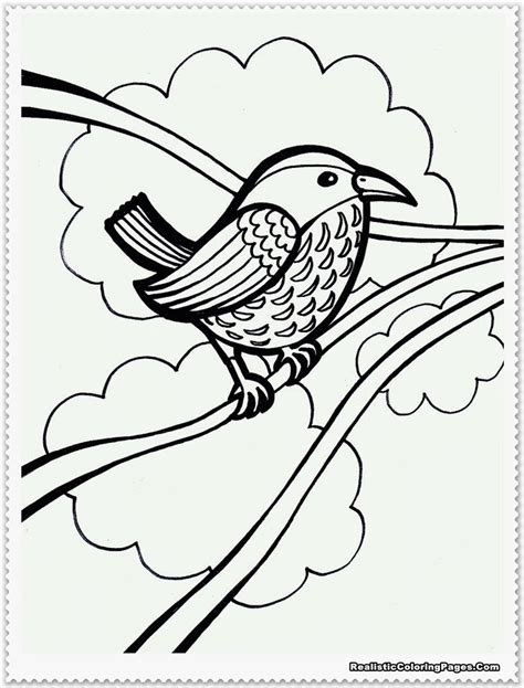 realistic bird coloring pages related keywords realistic