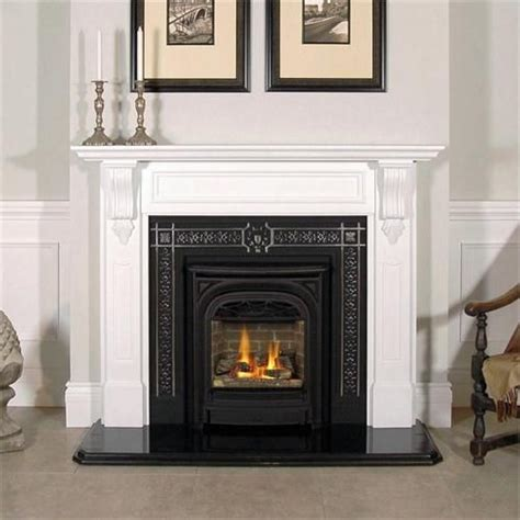 1000 ideas about gas fireplace inserts on