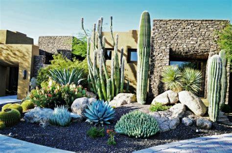 Deco Plante Exterieur by Cactus Et Plantes Grasses Ext 233 Rieur Pour Un Jardin Facile