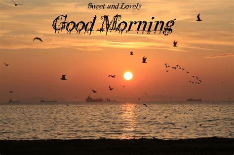 saxy photo good morning good morning sexy love quotes quotesgram