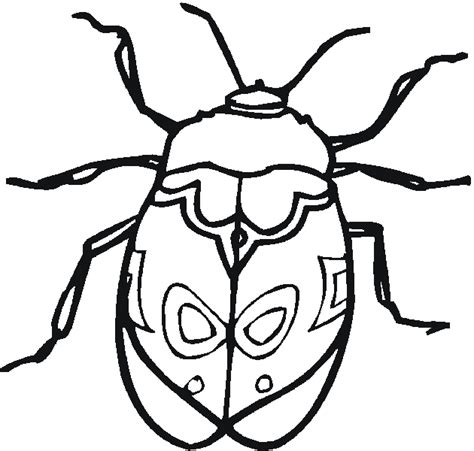 coloring pages bugs free insects and bugs coloring pages