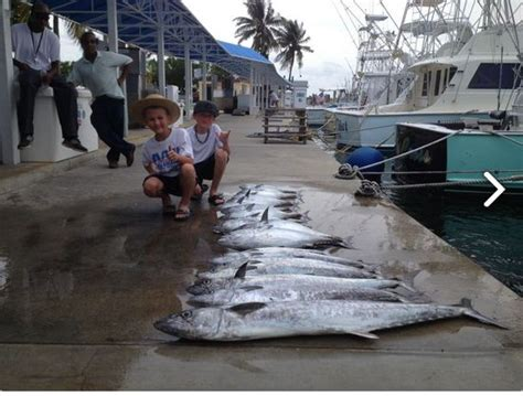 fishing charter boat in miami 25 best miami fishing charter boat images on pinterest