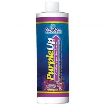 Purple Up 16 Oz 473ml purple up coralline algae accel 16 oz aquarium supplies
