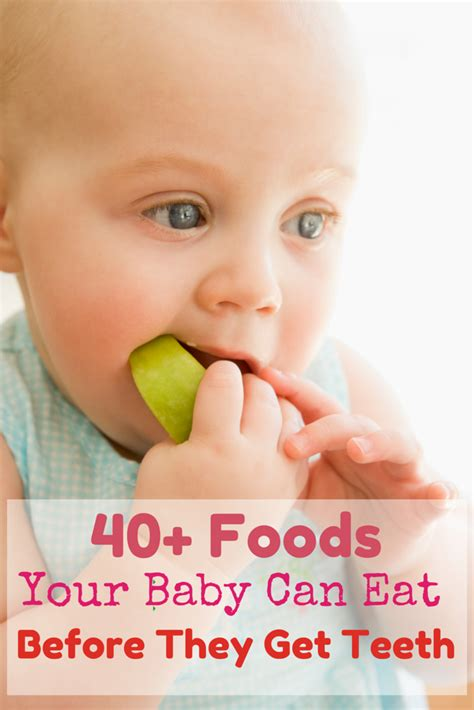 fruit 7 month baby can eat 40 foods your baby can eat before they teeth