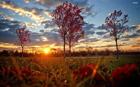 most beautiful images most beautiful sunset wallpapers wallpapersafari
