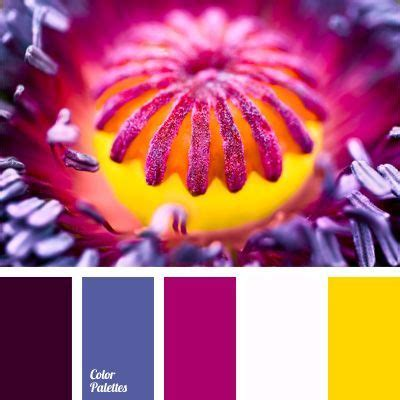 colors that match with purple blue violet color matching color of fuchsia color of