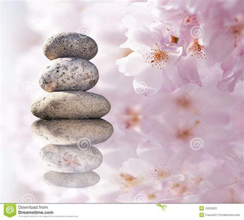 imagenes de piedras zen piedras del zen y flores del resorte imagen de archivo