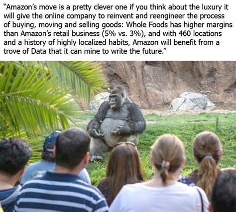 gorilla meme ted talk gorilla ted talk gorilla your meme