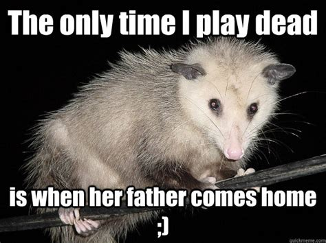 Possum Memes - the only time i play dead is when her father comes home