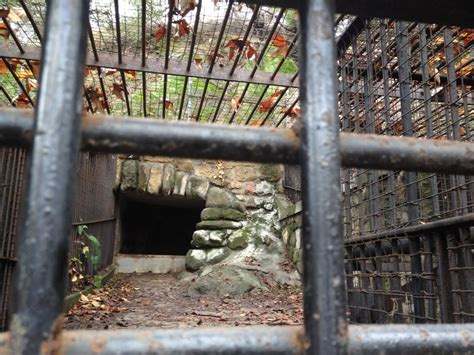 Top Bars Boston Notes From The Field Abandoned La Zoo Atlas Obscura