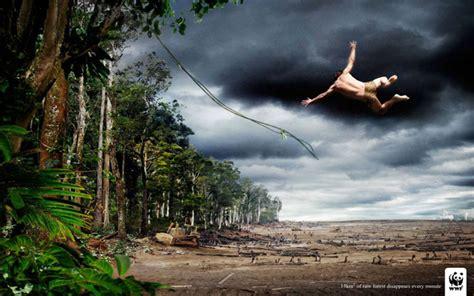 imagenes experiencia espiritual 35 affiches cr 233 atives et poignantes de la wwf qui vous
