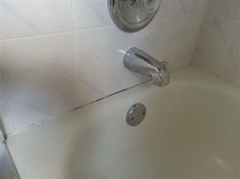Removing Mold From Bathtub Caulking by Mildew In Bathroom Caulk Spruce It Up Maintenance