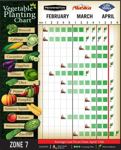 Vegetable Planting Chart For Zone 7 Here Is What My When To Plant Seeds For Vegetable Garden