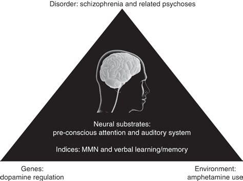 Hetamine Psychosis opinions on stimulant psychosis