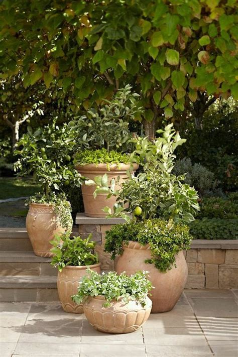 How Do I Make My Garden In The Italian Style Fresh Potted Plant Garden Ideas