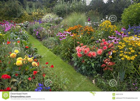 cottage garden stock image image of blooming